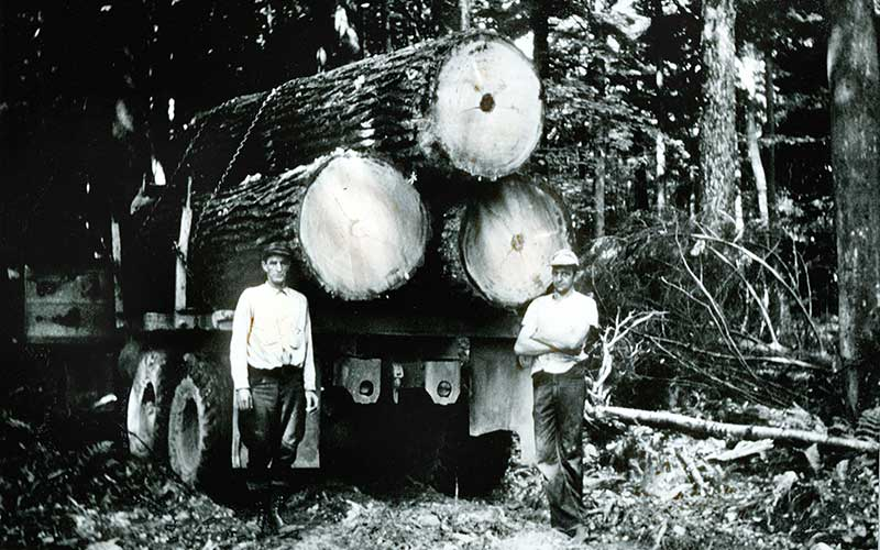 Old Photograph of Lumber Rafts